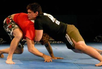 Grappling (Submission Wrestling)